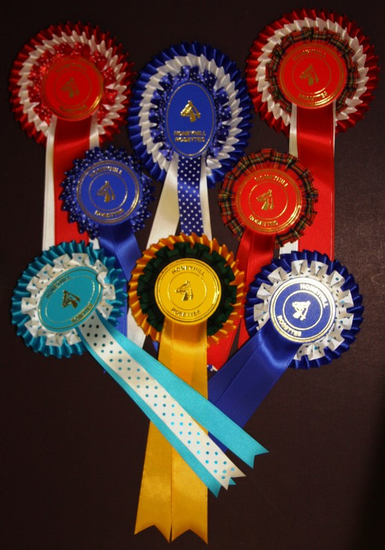 Spotted & Tartan Rosettes
